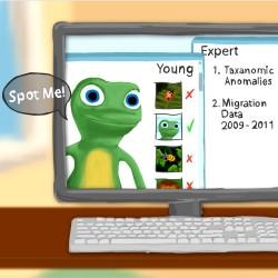 E-Species 2D