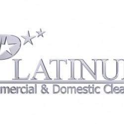 platinum cleaning logo