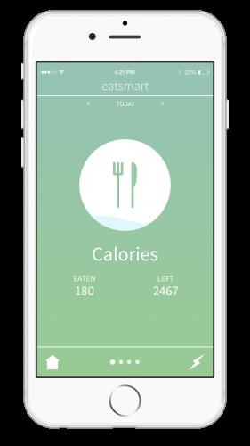 iPhone-Summary-Device