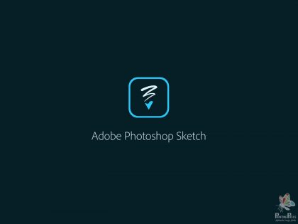 2-pp-adobe-sketch-review