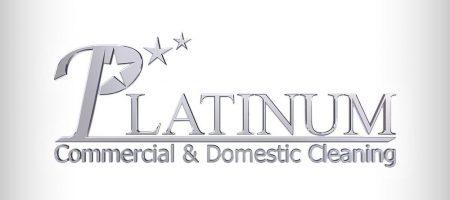 Platinum Cleaning Leaflet Graphic Design