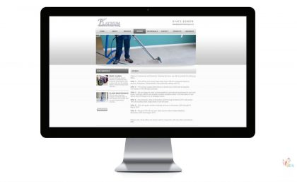 Platinum Cleaning - Website and Logo 4