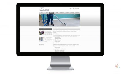 Platinum Cleaning - Website and Logo 6