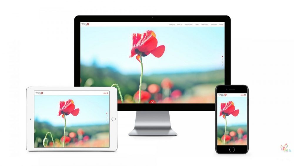 Poppy Nursing - Responsive Website 8