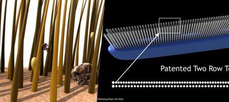 Shanty Pet Comb 3D Animation Explainer Video