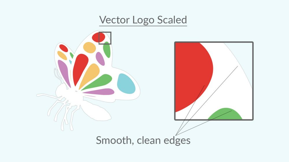 What is the difference between Vector and Bitmap images? 3