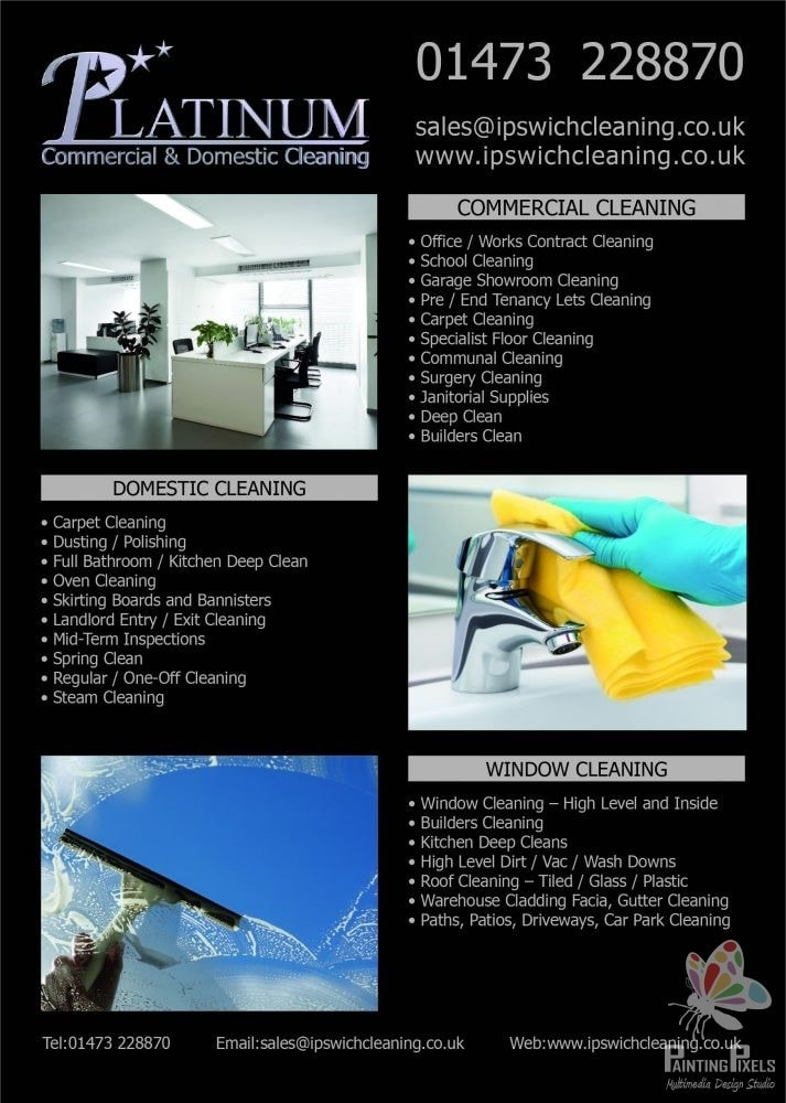 Painting Pixels Ipswich Suffolk Colchester Essex Norwich Norfolk London Graphic Design Leaflet Platinum Cleaning